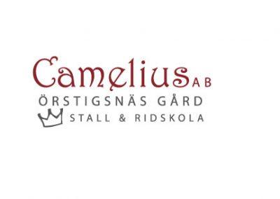 Stall Camelius